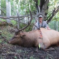 Hargrove Elk 2014