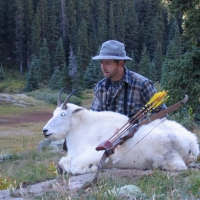 Todd Brickel Mountain Goat