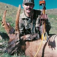 Gary Renfro selfbow Elk